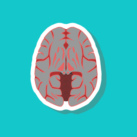 A brain paper sticker on stylish background