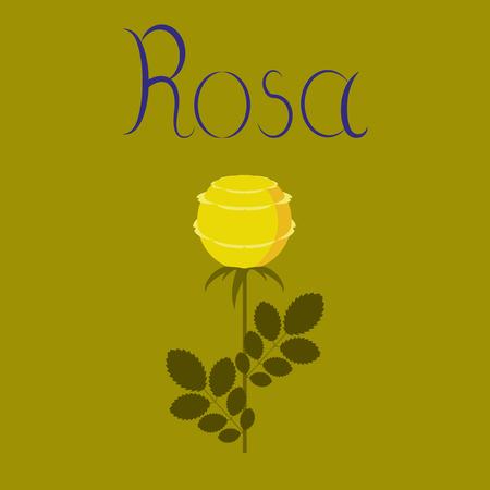 flat illustration on stylish background plant rosa