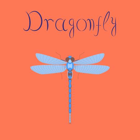 flat illustration on stylish background insect dragonfly