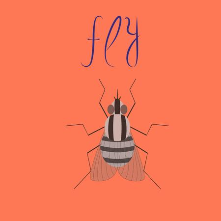 flat illustration on stylish background insect fly Иллюстрация