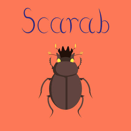 flat illustration on stylish background bug scarab