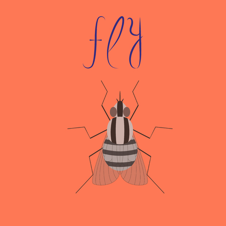 flat illustration on background insect fly Иллюстрация