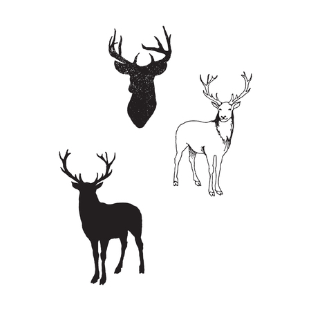 Collection of silhouettes of wild animals - the deer family Illustration