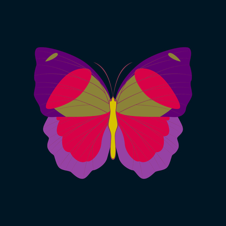 Colorful icon of butterfly isolated on dark blue 向量圖像