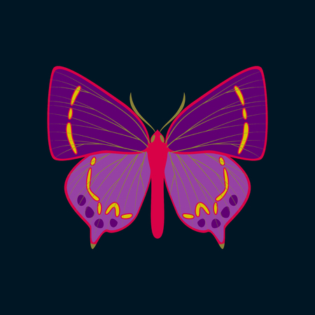Colorful icon of butterfly isolated on dark blue Stock Illustratie