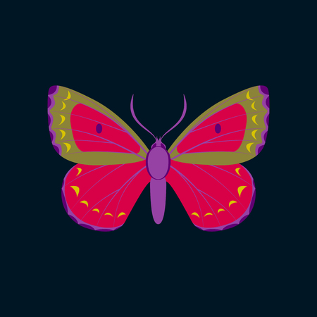 Colorful icon of butterfly isolated on dark blue Ilustração