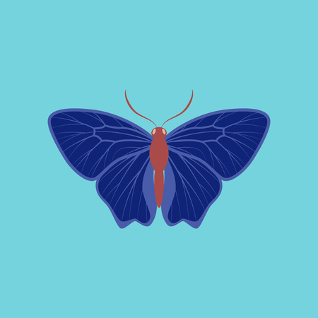 Colorful icon of butterfly isolated on blue Stock Illustratie