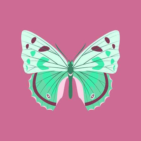 Colorful icon of butterfly isolated on pink Stock Illustratie