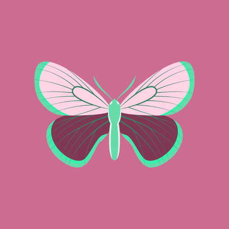 Colorful icon of butterfly isolated on pink Ilustração