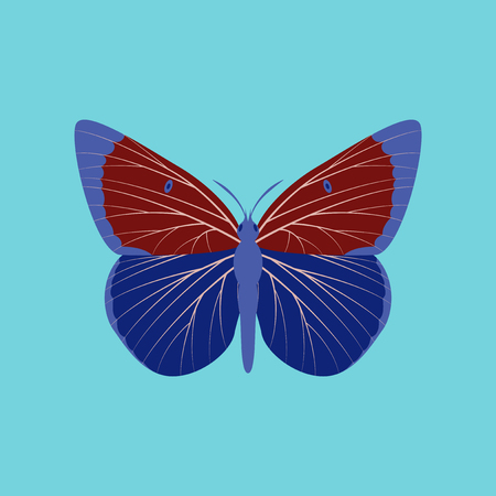 Colorful icon of butterfly isolated on blue Ilustração