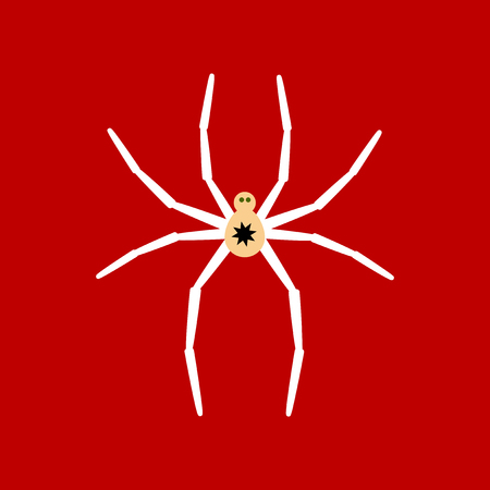 flat icon stylish background halloween spider