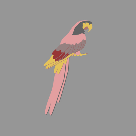 Vector illustration in flat style parrot