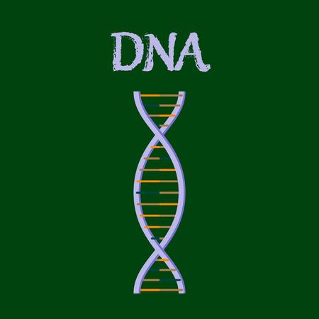 human organ icon in flat style DNA