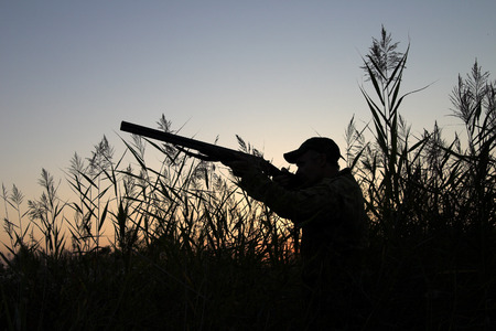 shooting gun: Silhouette of the hunter on a background of a morning dawn