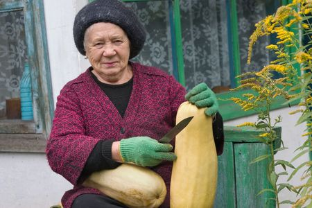 The gardener with brought up in the to a garden a crop Stock Photo - 3640939