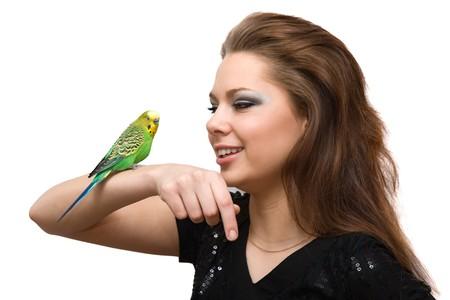 conversa: La ni�a habla con un loro verde