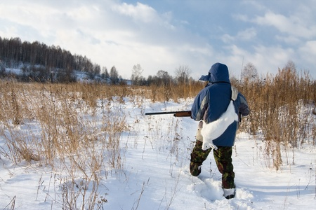 Winter hunting for hares on the first snow Stock Photo