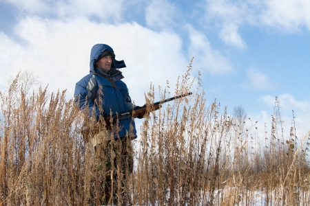 Winter hunting for hares on the first snow photo