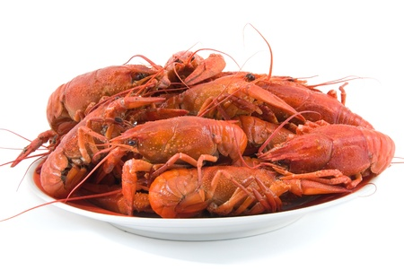 boiled crawfish in a plate, isolated on a white background photo