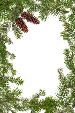 Christmas frame of the branches of pine, isolated on white background  Stock Photo