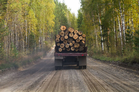 truck carrying woods on a dirt road photo