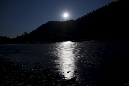 moonbeam: Moonlight night in the forest on the river