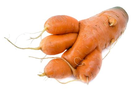 raw vegetables: Carrots bizarre like a beastly paw