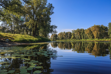 Beautiful summer landscape with a river and water lilies Stock Photo