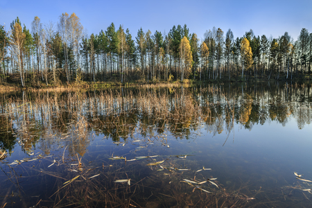 View of a forest lake in the autumn season