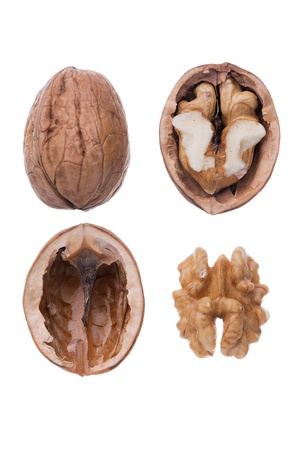 Structure of a walnut Stock Photo