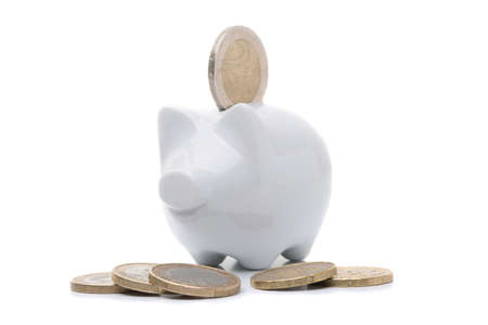 Coins and piggy bank isolated on white