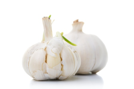 Two garlic onions with focus on the front one, isolated on white
