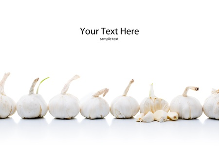 Garlic onions in a line isolated on white with space above for text