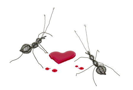 2 ants made from steel wire which fiilled rust become for eat sweet red heart syrup photo