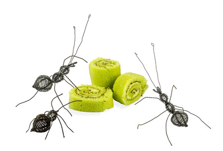 Ants made from steel wire which fiilled rust become for eat cake role photo