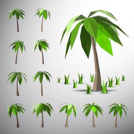 tree shape': Vector Low polygon 3D palm tree