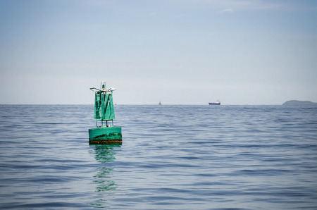 buoyancy: An image of a green color Buoyancy in the sea