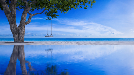 3d rendering image of rope swing under the tree placed on timber deck and swimming pool which have blue sky and sea as background. sea view deck in day light. Stock Photo