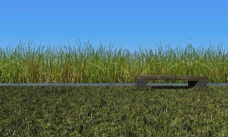 3d rendering  green color wild grasses field and log table placed on grasses field.