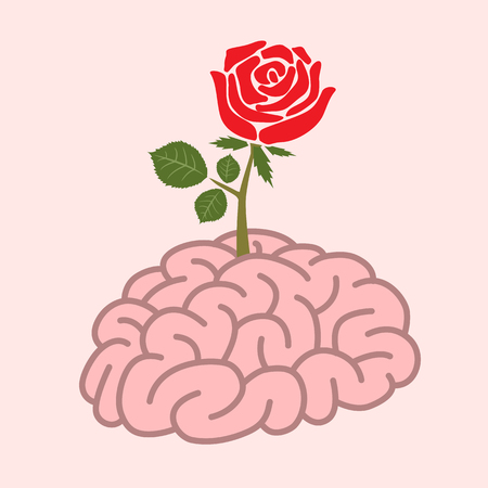 grow up: A red big rose grow up from human brain .Abstract valentine design