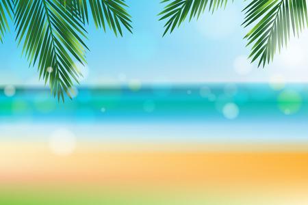 noix de coco: L'heure d'�t� � la plage avec feuilles de cocotier sur l'effet haut et bokeh