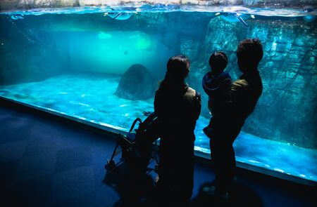 YOKOHAMA,JAPAN MARCH 13,2019 Family standing and looking at Emperor penguins in the display area at Hakkeijima Sea Paradise aquarium museum Editorial