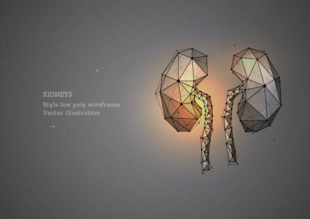 Kidney. Low poly wireframe style. Banner concept, the treatment of urological diseases. Organ transplantation. Abstract illustration isolated on gray dark background.