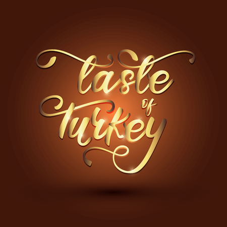 Taste Of Turkey lettering banner design. Vector illustration.