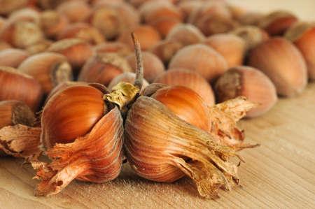 heap: close-up of heap of hazelnuts