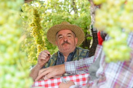 agribusiness: Gambellara, northern Italy, Italy - september, 27, 2015 - close up of participant dressed up as farmer at the Gambellara Wine Festival 2015