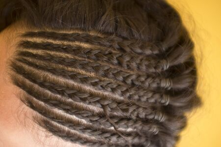 Hairstyles with braids close-up