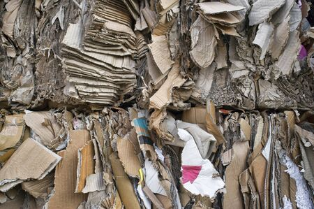 compressed paper and cardboard waiting recycling Reklamní fotografie - 137792761