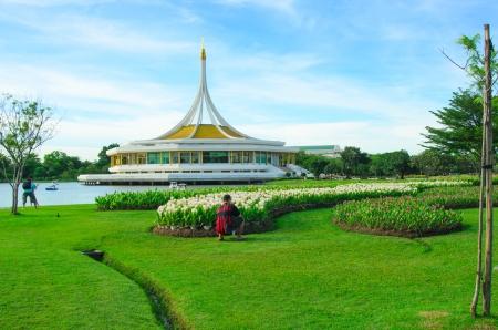 ix: field of siam tulip or patumma blooming at rama IX public garden in Bangkok,Thailand