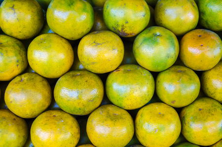 reticulata: Close up focus a lots of orange on stack at market place,(Citrus reticulata, Tangerine)
